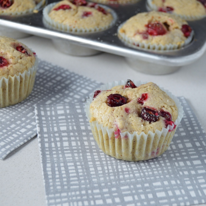 Cranberry Muffins (dairy-free | egg-free)